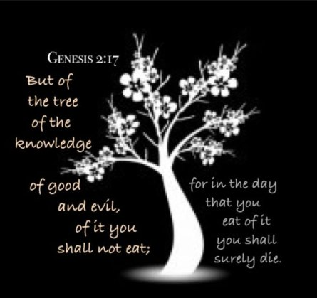gen-2-17-do-not-eat-of-the-tree-of-knowledge-of-good-and-evil