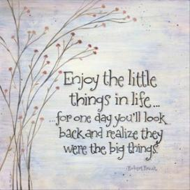263650-little-things-in-life-quote